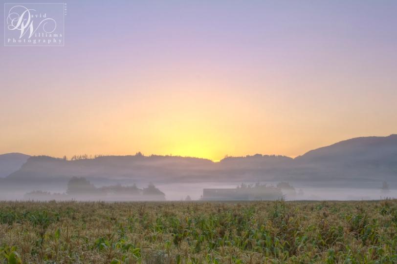 David Williams Photography Sunrise Wordless Wednesday