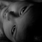 David Williams Photography iHeart Softbox Pro iPad 2
