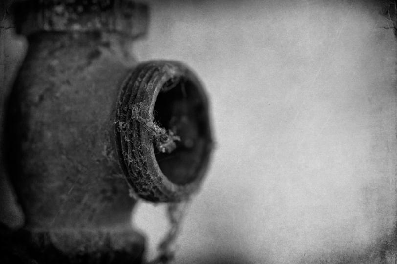 David Williams Photography Textured Thursday ~07.12.12~