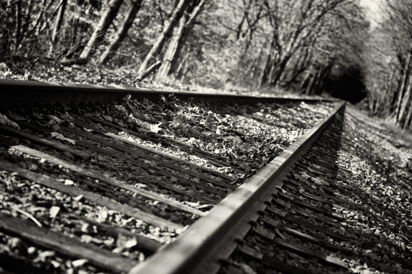 David Williams Photography Tracks