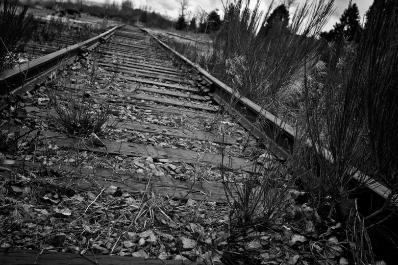 David Williams Photography The Forgotten Tracks