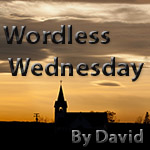 Wordless Wednesday by David