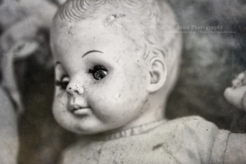 David Williams Photography Shipwreck Days Freaky Doll