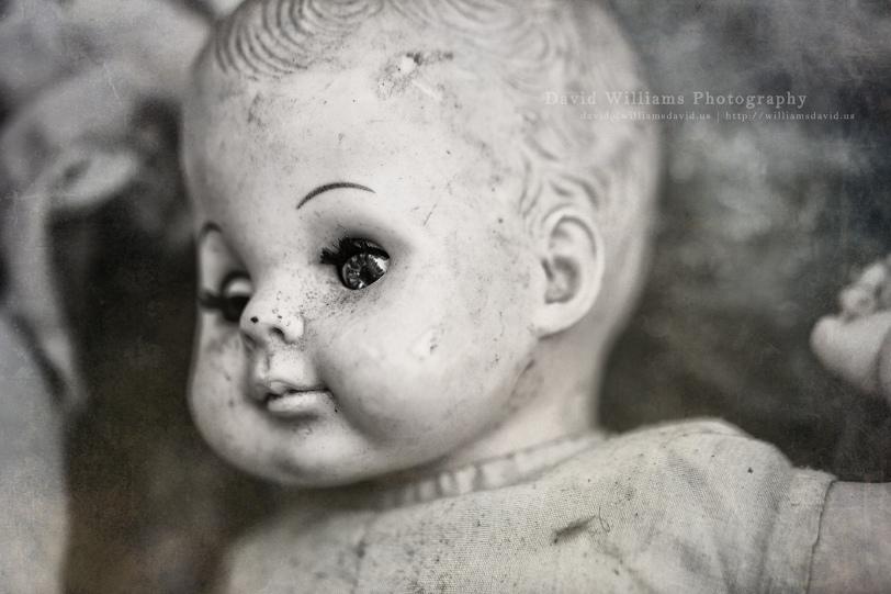 David Williams Photography Shipwreck Days Freaky Doll