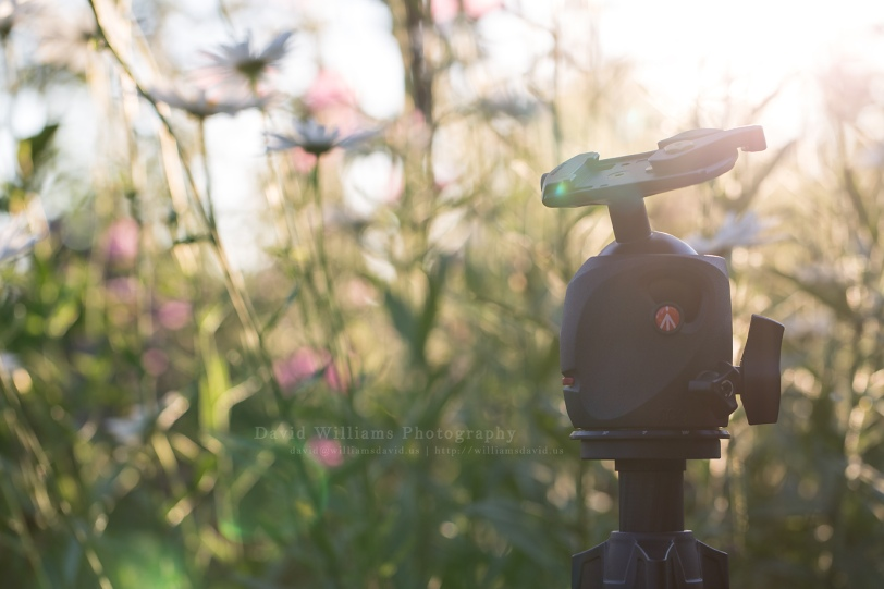 David Williams Photography Manfrotto MH057MO