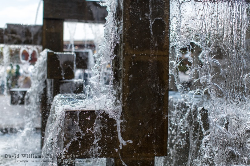 David Williams Photography Splash