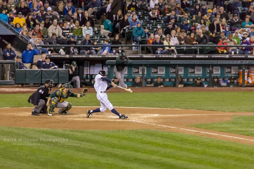 David Williams Photography Grandslam