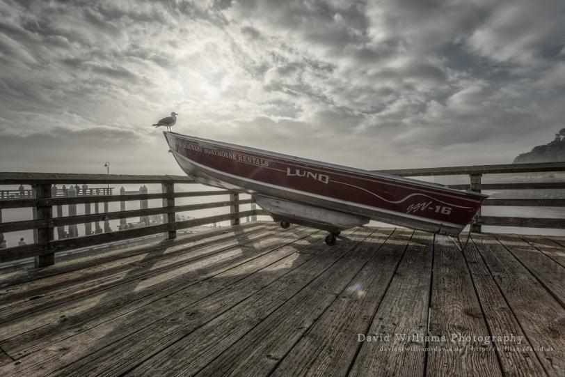 David Williams Photography Sea
