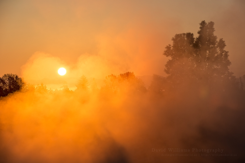 David Williams Photography Sunrise