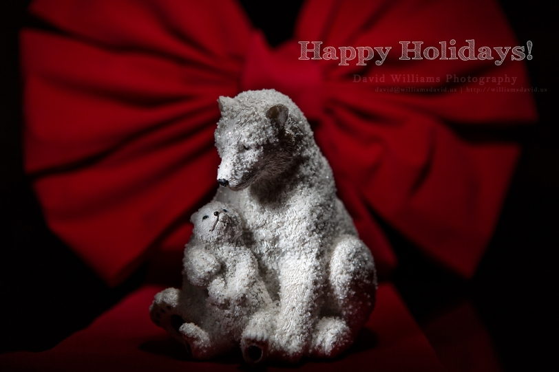 David Williams Photography Happy Holidays!