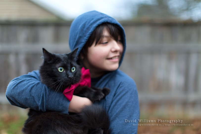 David Williams Photography Cat & The Bow Tie 2