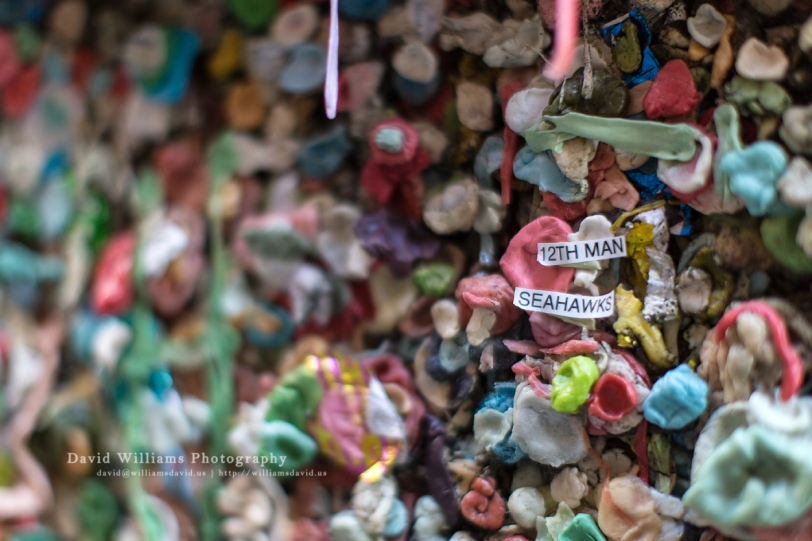 Gum Wall 12th Man