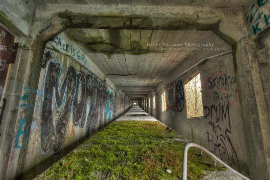 David Williams Photography Lime Quarry Conveyor Table